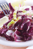 Radicchio Salad. Served with olive oil Stock Photo