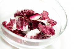 Radicchio salad in the bowl isolated Stock Photography