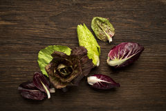 Radicchio Salad Royalty Free Stock Photo