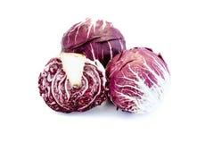 Radicchio salad isolated on white background stock image