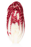 Radicchio section, red salad Stock Images