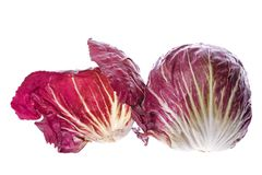Radicchio Vegetable. Isolated image of Radicchio vegetable Stock Images
