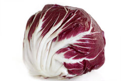 Radicchio on white background Royalty Free Stock Images