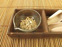 Radice di Kava, rhizoma di Kava-Kava immagine stock