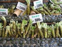 Radice di Wasabi da vendere Immagini Stock