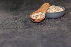 Radice secca di ginseng siberiano su fondo scuro - alternativa della medicina immagine stock