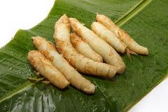 Radici asiatiche cucinate Fotografie Stock Libere da Diritti