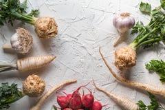 Radici di sedano, prezzemolo, ravanelli con le foglie ed aglio su uno spazio libero della tavola bianca Immagini Stock Libere da Diritti