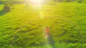 Radiellt flyg för låg höjd över sportyogaman på perfekt grönt gräs Solnedgång i berg lager videofilmer