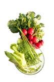 Radijzen en kruiden voor salade Stock Afbeelding