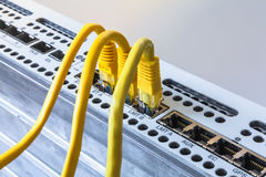 Radio base station and three yellow patch cords. Internet. Communication. Stock Photo
