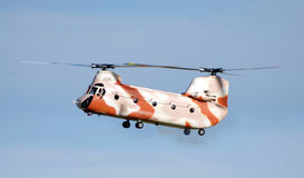 Radio Controled Chinook Helicopter Royalty Free Stock Photos