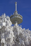 Radio mast in winter Stock Image