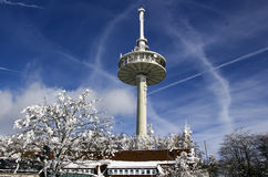 Radio mast in winter Royalty Free Stock Photo