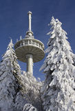 Radio mast in winter Royalty Free Stock Photos