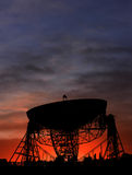 Radio Telescope Sunset. Silhouette of Lovell telescope at Jodrell Bank observatory in the UK Royalty Free Stock Photo