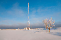 Radio tower. Shot of radio tower, tree and amaizing blue sky Stock Photography