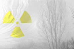 Radioactive symbol at misty forest. Royalty Free Stock Photography