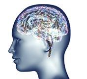 Radiografía de la cabeza humana con las píldoras y las drogas para el cerebro ilustración del vector