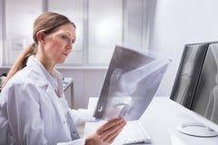 Radiografía del doctor Examining Knee foto de archivo libre de regalías