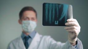 Radiografía en las manos de un doctor almacen de metraje de vídeo