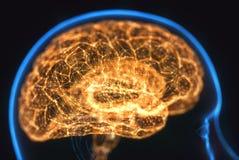 Radiograf?a potente del cerebro de la mente imagen de archivo libre de regalías