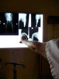 Radiography at the vet Stock Photos