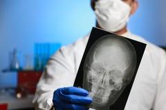 radiologi Royaltyfria Foton