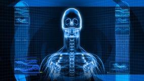 radiologiczny obraz cyfrowy Ludzki kościec (HD) ilustracja wektor