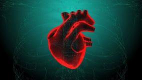 Radiologiczny serce w akci Loopable Hd wideo ilustracja wektor