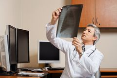 Radiologist Reviewing Shoulder X-ray Royalty Free Stock Photos