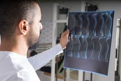 Doctor analysing X-ray image of spine. Radiologist studying X-ray image of human spine in consulting room royalty free stock images