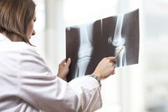 Radiologist Royalty Free Stock Photo