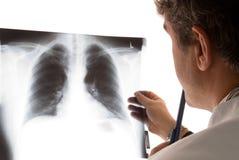Radiologista Imagens de Stock Royalty Free