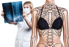 Radiologkvinna som kontrollerar röntgenstrålen nära patient arkivbild