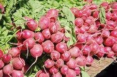 radis Images stock