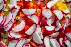 Radis coupé en tranches avec des paprikas Photo stock