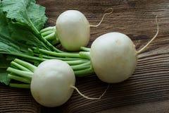 Radis de Daikon Radis japonais rond blanc brut frais savoureux photographie stock