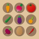 Radis de poivre d'oignon d'aubergine de concombre de carotte de betterave de pomme de terre de tomate d'icônes de légumes photo stock