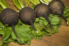Radis et feuilles noirs sur les conseils en bois Photo stock