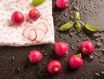 Radis frais avec la feuille de basilic Photo stock