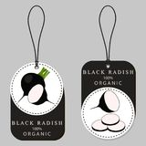 Radis noir végétal mûr entier Photographie stock libre de droits