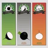 Radis noir végétal mûr entier Image libre de droits