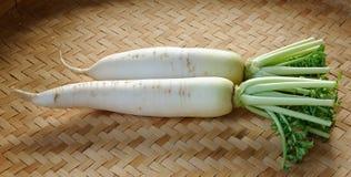 Radis organiques frais de daikon Images libres de droits