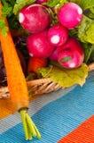 Radis, raccords en caoutchouc et betterave de jardin. photographie stock