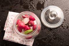 Radis rouge dans le pot en verre Photos libres de droits