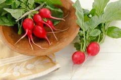 Radis rouges frais Photographie stock libre de droits