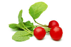 Radish. Bunch of red radish with leaves Royalty Free Stock Images
