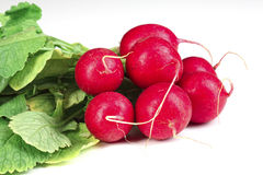 Radish. Closeup image of classic red fresh radish background Royalty Free Stock Image