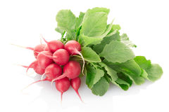 Radish. Bunch close up isolated on white, clipping path included Stock Image